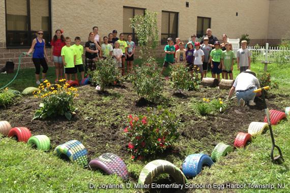 Schoolyard Habitats - Garden for Wildlife | National Wildlife Federation