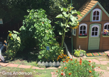 Garden and Playhouse: Gina Anderson