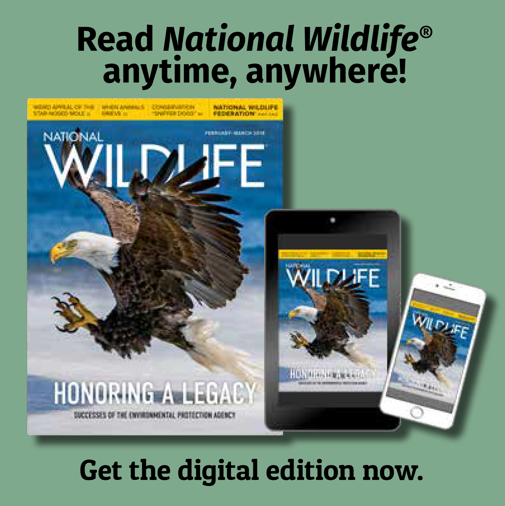 National Wildlife magazine ad