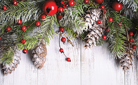 pine cones and berries on wooden background