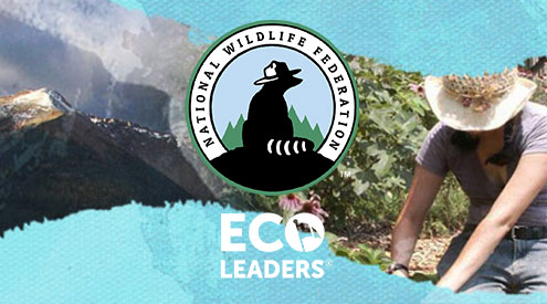 Eco Leaders