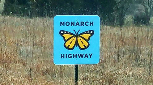Monarch Highway sign in front of grass