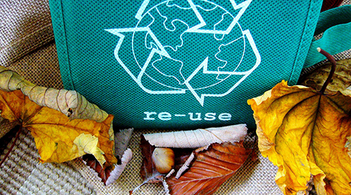 4.5 Million College Students, Faculty and Staff Engage in National Wildlife Federation's 2020 RecycleMania Competition