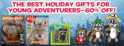 The best holiday gifts for young adventurers at 60% off!