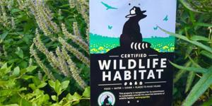 Certified Wildlife Habitat Image