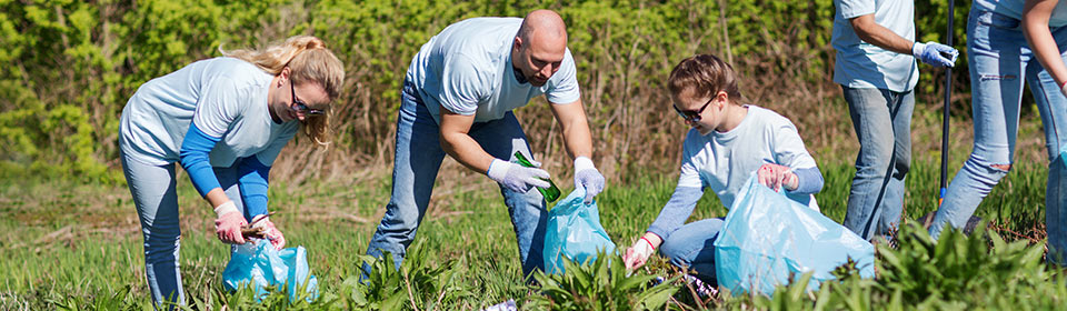 people collecting litter in grass