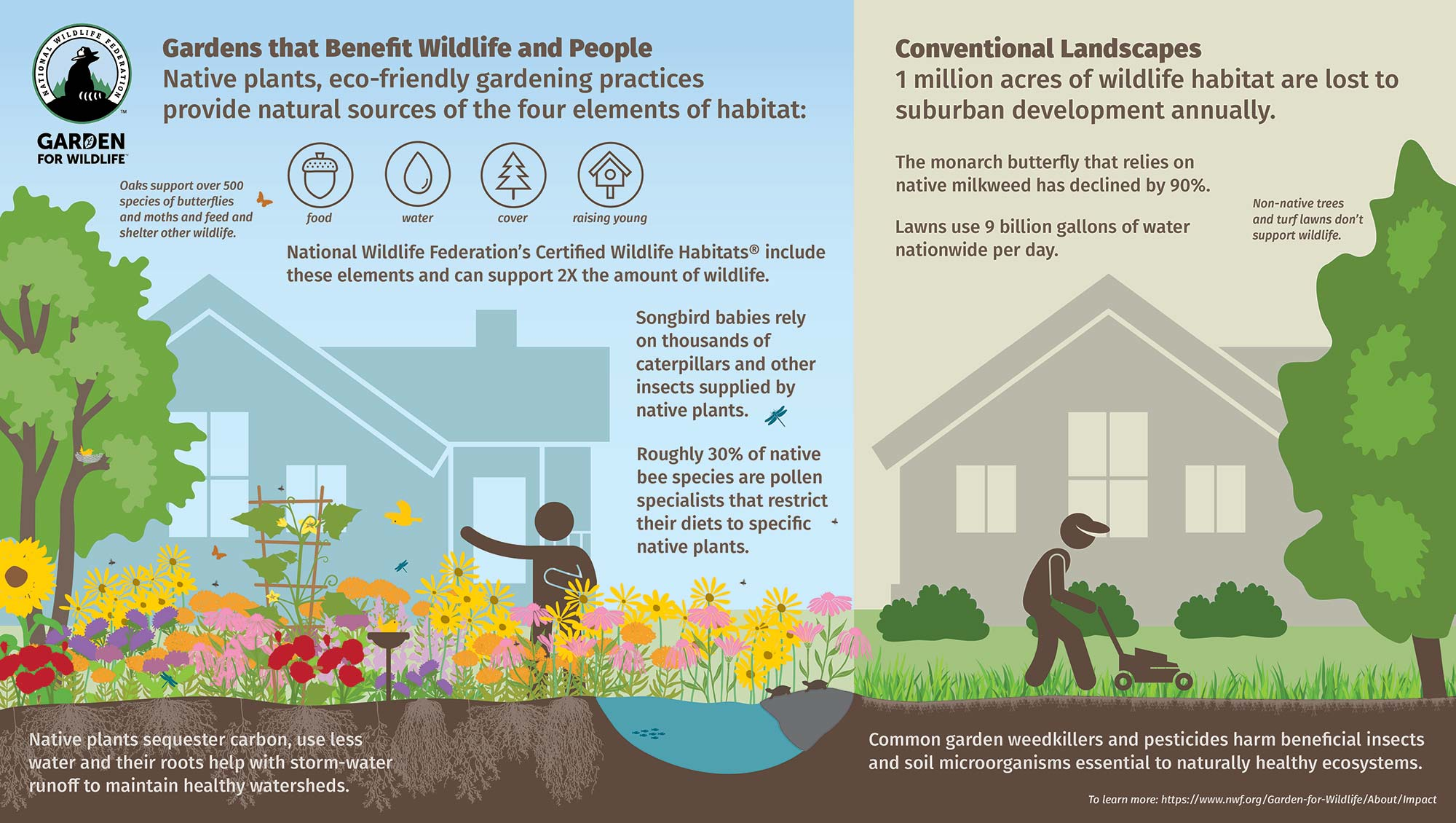a graphic of a Garden for Wildlife versus a conventional yard