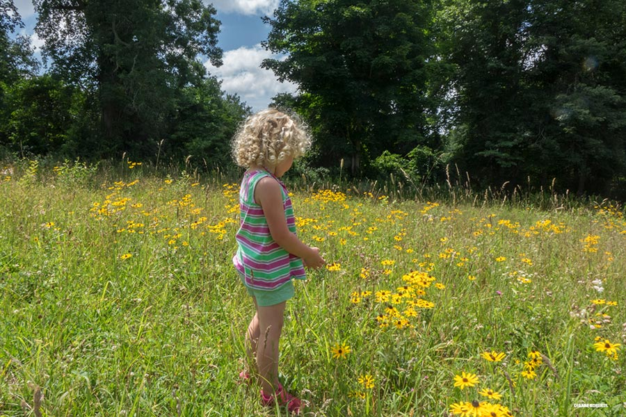 young girl in meadow