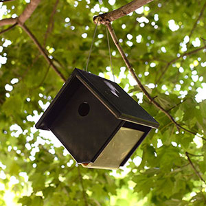Hanging nest box