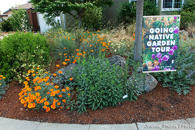 Regional examples garden in ca j kehoe publicscrutiny Image collections