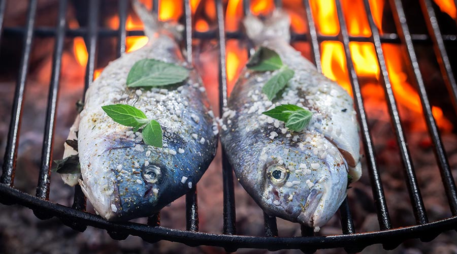 two fish on a grill