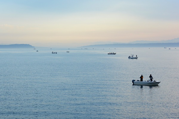 anglers fishing Puget Sound