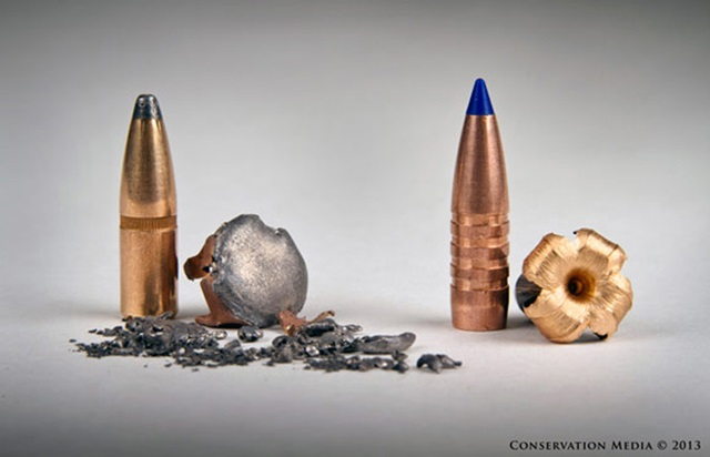 a lead bullet and a copper bullet