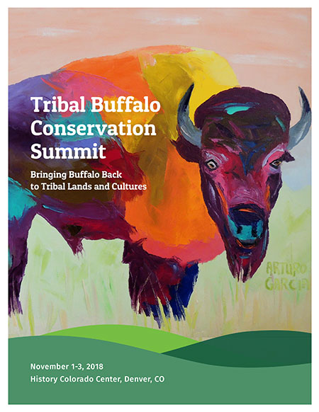Tribal Buffalo Conservation Summit brochure cover