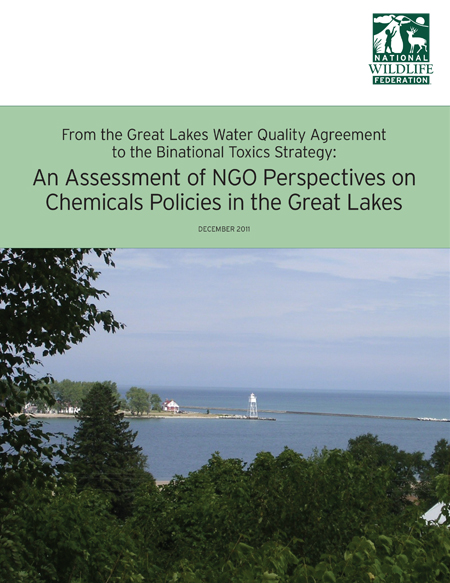 National Wildlife Federation Report From The Great Lakes Water