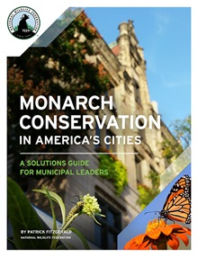 Monarch Conservation Cover