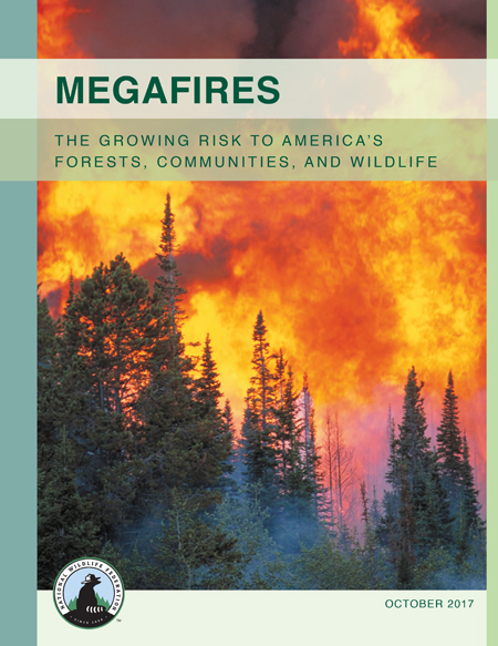 National Wildlife Federation Report: Megafires