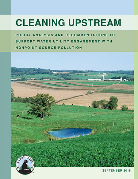 National Wildlife Federation report: Cleaning Upstream