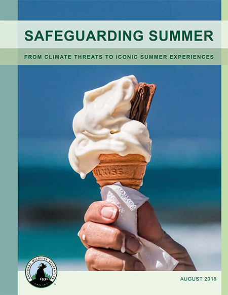 Safeguarding Summer report cover