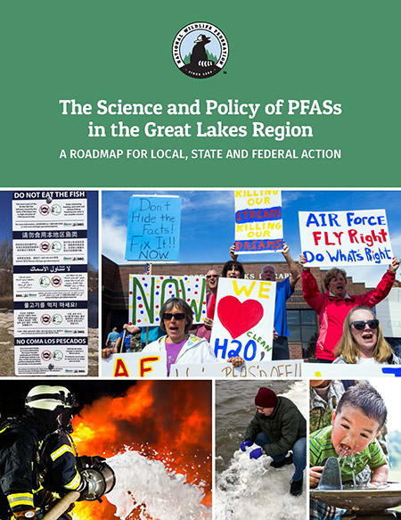 The Science and Policy of PFASs in the Great Lakes Region report cover