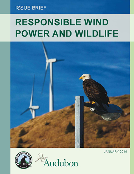 Responsible Wind Power and Wildlife report cover