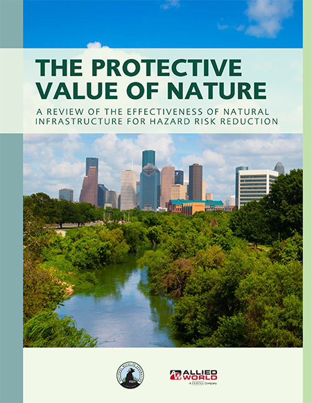 The Protective Value of Nature report cover