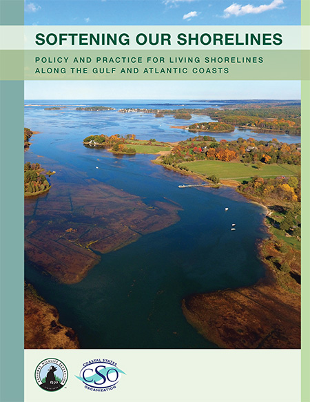 Softening Our Shorelines report cover