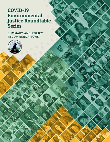 COVID-19 Environmental Justice Roundtable Series Summary and Policy Recommendations
