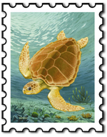 Sea Turtle Stamp