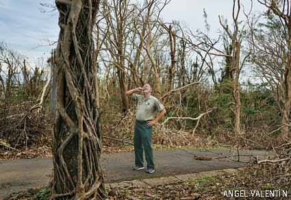 Damaged Property, Dr. Ariel Lugo, University of Puerto Rico's Botanical Gardens