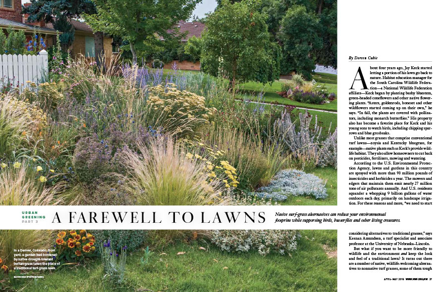 A Farewell To Lawns