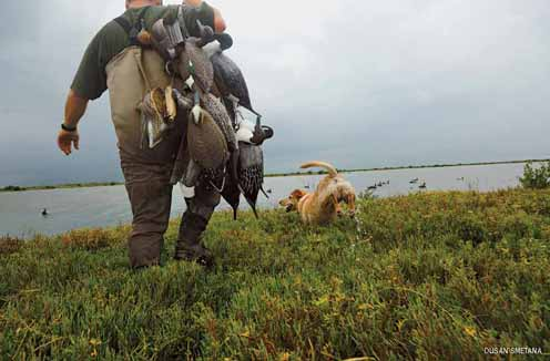 Hunters with duck decoys & dog