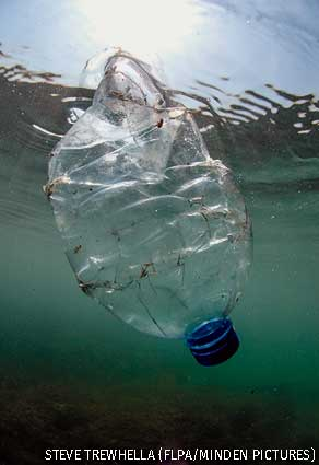 Plastic bottle drifting underwater in sea, Brandy Bay, Dorset, England.