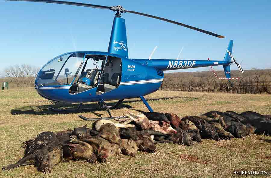 Feral Hog Hunt, Heli-Hunter