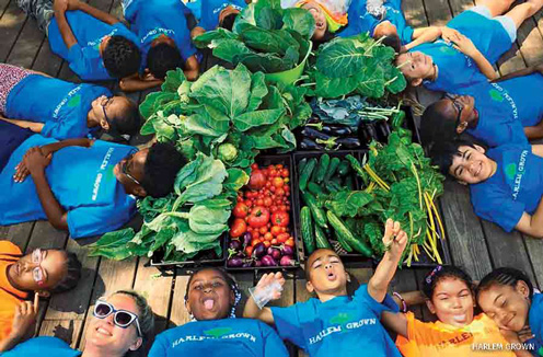 Kids celebrate harvest at urban farm site on 134th street, New York City