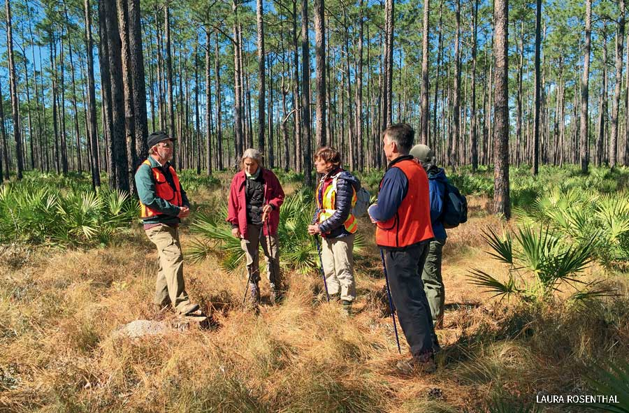 A Florida Trail Association plant Identification Hike in Apalachicola National Forest.
