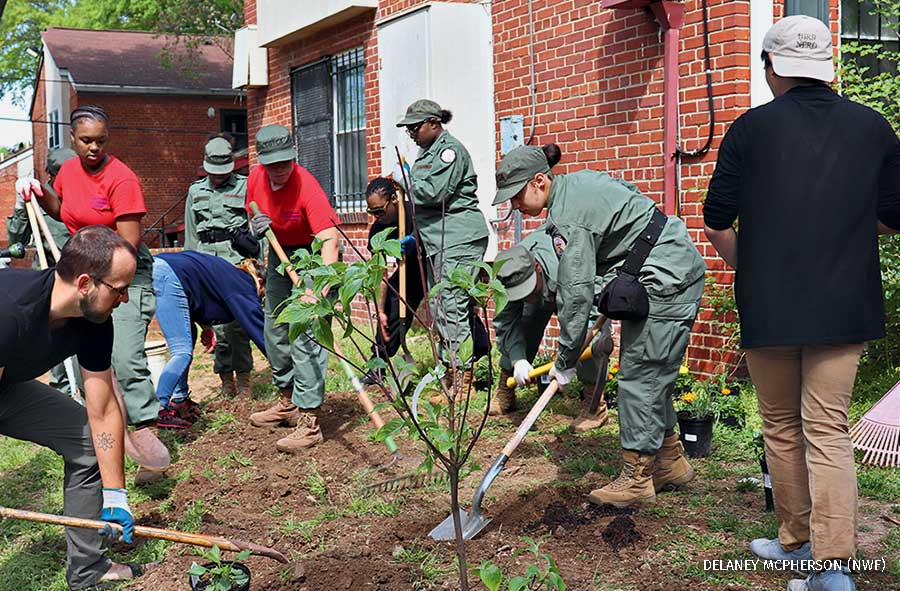 Earth Day Earth conservation corps tree planting