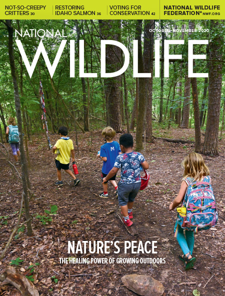 National Wildlife magazine October-November cover featuring children exploring in the woods