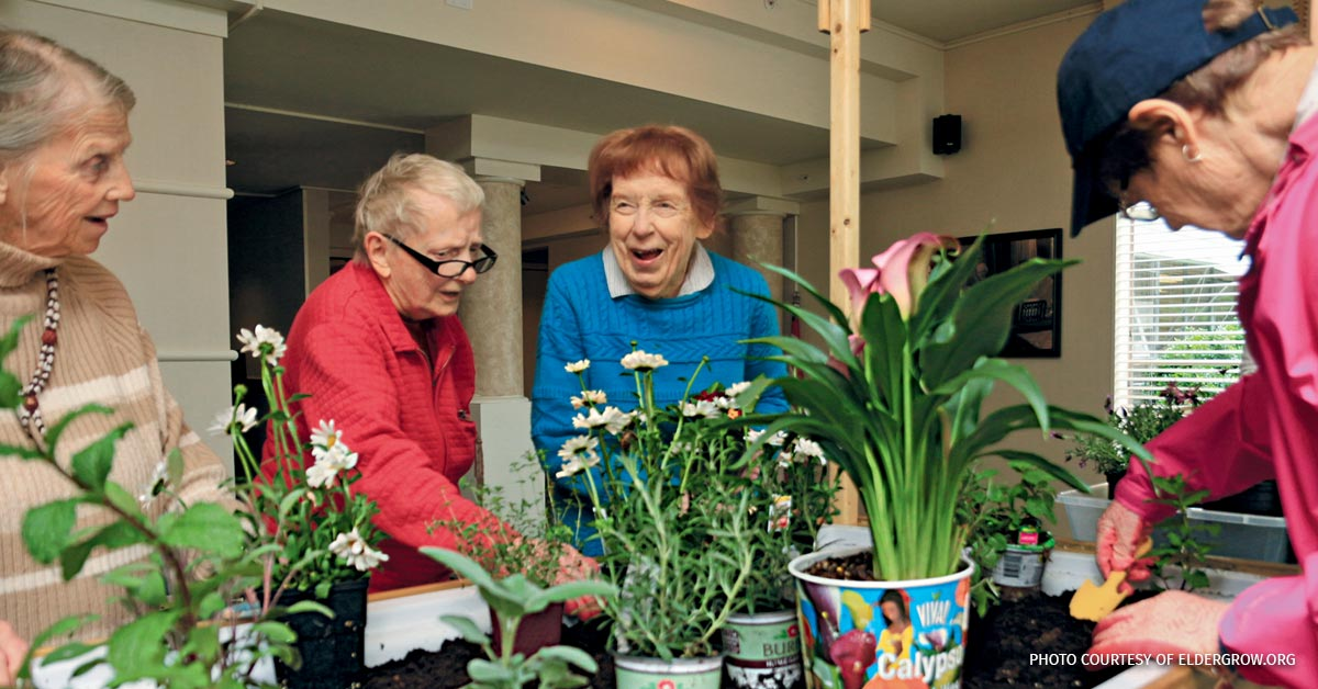 A group of women look at potted flowers.