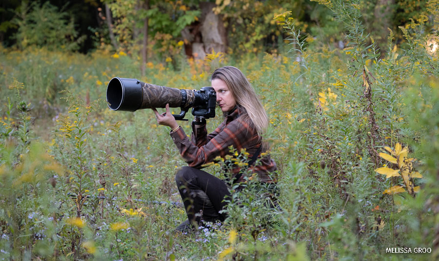 Photographer Melissa Groo peers through her camera's lens