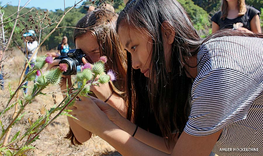 Girls taking close up photos of a plant