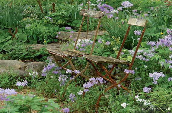 Weedy to Wonderful on small garden design, wild garden design, cactus garden design, sand design, organic garden design, gravel design, herb garden design,