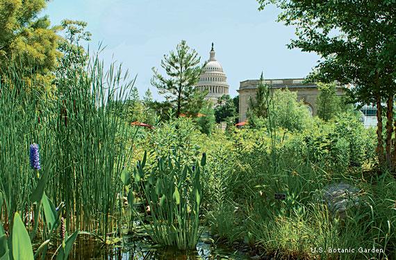 Broader Role for Botanical Gardens