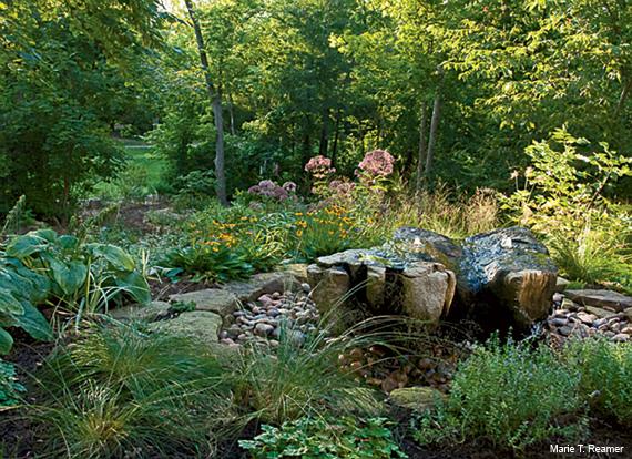 Certified Backyard Habitat backyard habitat: making dollars and sense in your yard