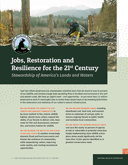 Jobs, Restoration and Resilience for the 21st Century report cover