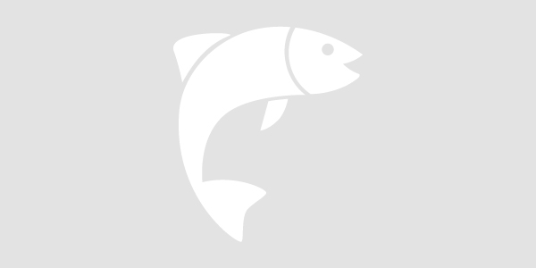 Fish Placeholder Image (no image available)