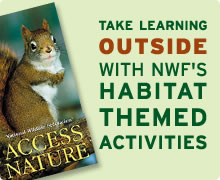Take learning outside with NWF's habitat themed activities