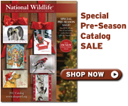 Shop our preseason catalog sale today!