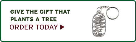 Give the gift that plants a tree