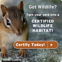 certify your yard today!